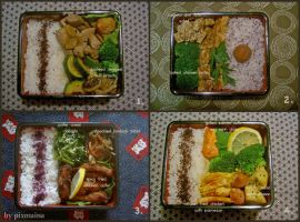 Obento Collection 8 by pixmaina