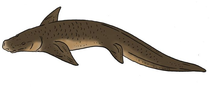 Skull Island Bestiary - Flat Snouted Lungfish by Pristichampsus