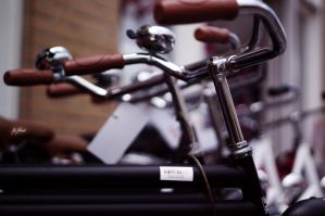 Pride of Bicycles by DanNoland