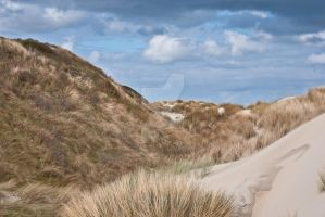 Dutch Dunes - Renesse by chalkwebdesign
