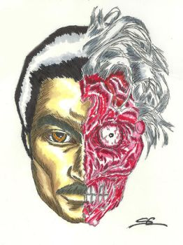 Billy Dee Williams as Harvey Dent/Two-Face by angelboi69
