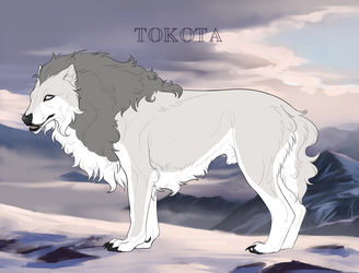 Silver winter storm 33400 by TotemSpirit
