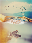 Action 27 + PSD by diastereomer