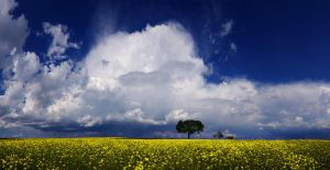 Hungarian skies CCX. by realityDream