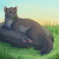 Cinderpelt by paintedpaw-cat