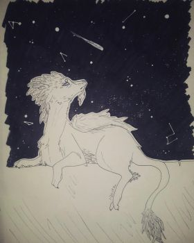 Stars and Feathers by Barking--Cat