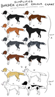 NEW Border Collie Colour Chart by Kimptone