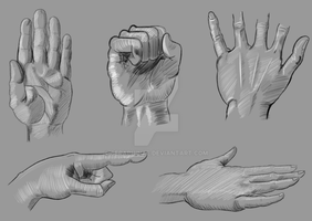 Hand Study Poses 1 by Seraphinae