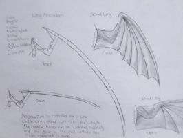 Wing Schematic by Tsukune