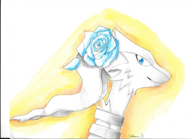 Reshiram with a blue rose by Ookumo