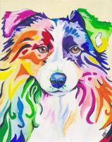 Collie by Eve-I