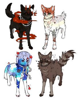 canine adopts [closed] by wakesfield