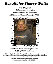 Benefit Flier for Mom by Arianstar