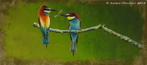 Bee eaters by flysch