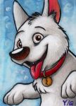 Bolt ACEO by Sternen-Gaukler