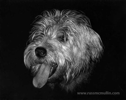 Candy in Scratchboard by RustyScratchy