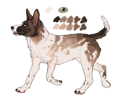 Piebald pup adopt - closed by Evrott