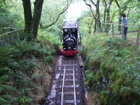 Talyllyn at Dolgoch by rh281285