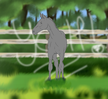 YCH |Foal|CLOSED by NorthernMyth
