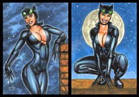 CATWOMAN PERSONAL SKETCH CARDS by AHochrein2010