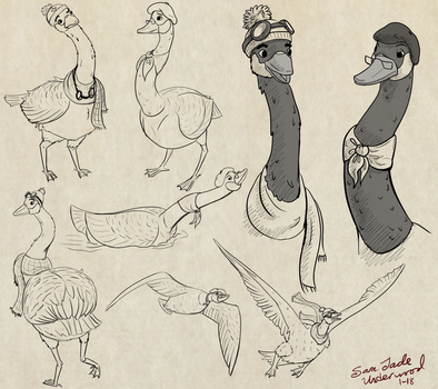 Goose sketches by Phatmouse09