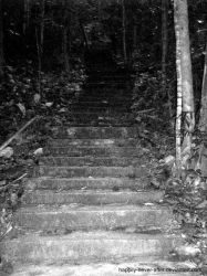 600 stairs by happily-never-after