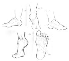 Foot Study by TwilightsDon
