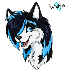 Head Shot: Sparx Traxx the husky by WolfieMoonscar