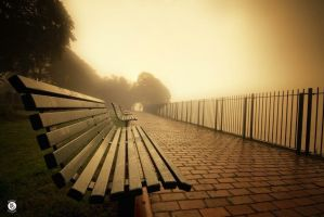 Come Sit Awhile  by MikeFShaw