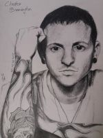 Chester by MidoriiArt