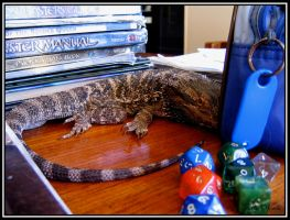 Dungeons and Bearded Dragons by Armenius