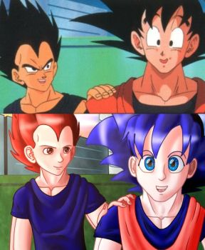 canon vs my style by ask-son-goku