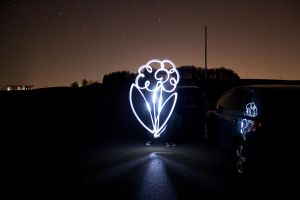 Flower of Light by Luton