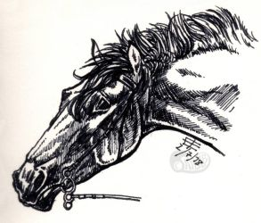 Marker horse by Afuze