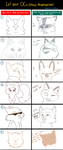 Personality Meme by drawingwolf17