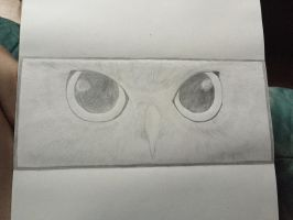 Owl eyes- work in progress  by SnowWolfx13