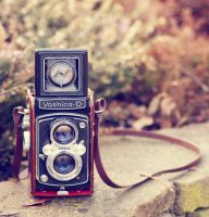 Yashica by Squirrelondope