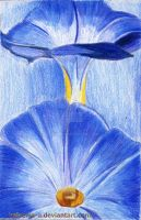 Blue exotic flower by Haleema-A