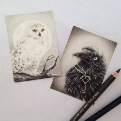 ACEO - Snow Owl and Raven's Key by Zindy