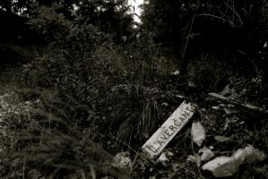 Broken signpost by KajiyaEol