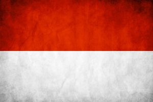 Indonesia Grunge Flag by think0