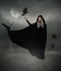 Queen of Crows by mysolitaryground