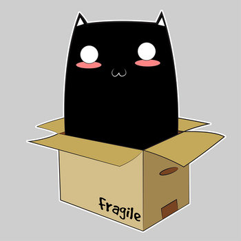 Black Cat in a Box by Catifornia