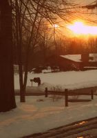 Winter's Sunset by middie4life0637
