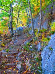 Maine Fall 2 by bleu-claire-stock