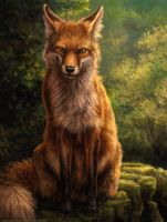 Reynard by kenket