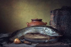 Fish still life by Daykiney