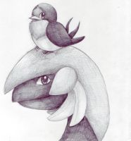 Taillow and Tropius