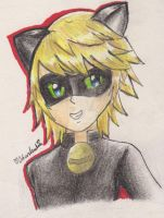 Chat Noir by VentusSkyress14