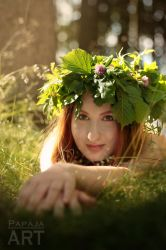Forest fairy 4 by papaja94